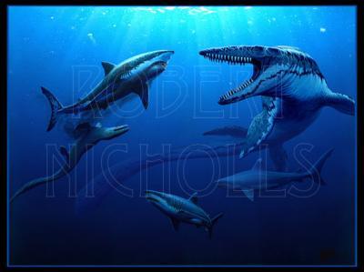 Rivalidad marina