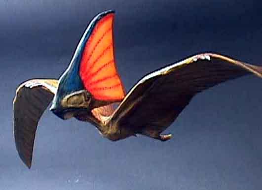 Pterosaurio carnavalesco